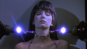 frankenhooker-resurrection3